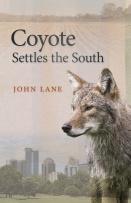 lane_coyotesettles_he