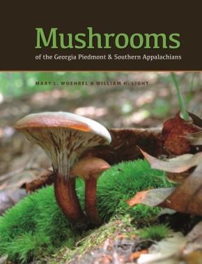 Woehrel_Mushrooms