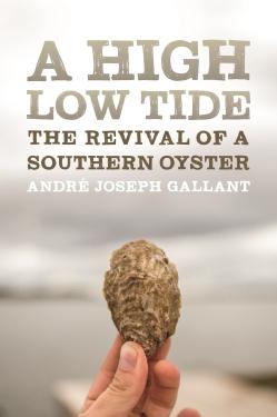 Gallant_High Low Tide